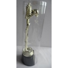Skeleton Best Costume Trophy