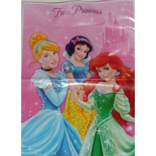 Disney Princess Sparkle Loot Bags