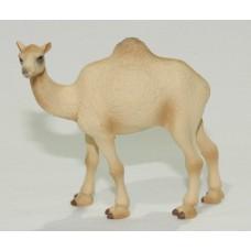 Camel Replica